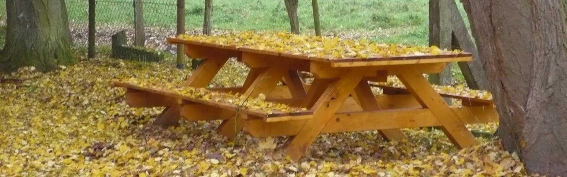 Herbst in 29690 Buchholz